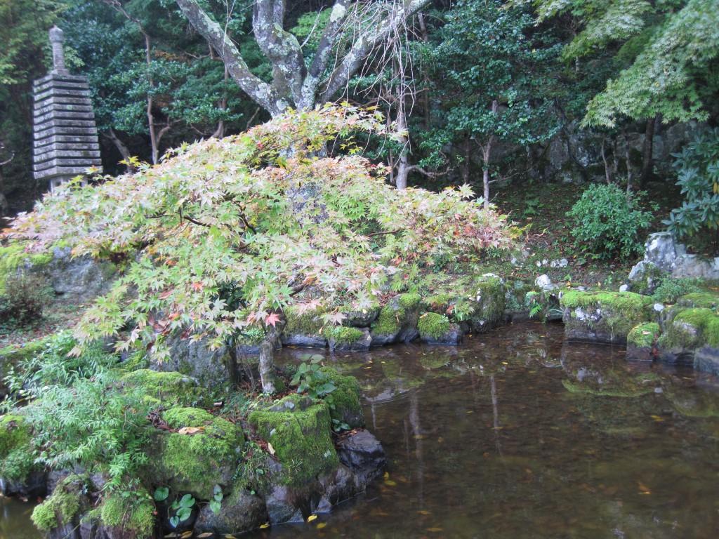 竹林院の庭園